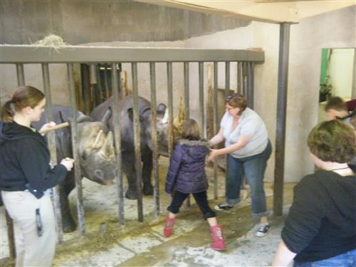 Meet and Greet with the Rhinos at the Sedgwick County Zoo