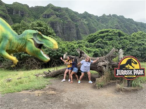 Hawaii at the Ranch where Jurassic Park was filmed.