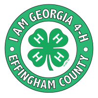 I am Gerogia 4-H, Effingham County